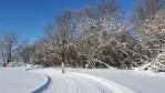 Boundary Trails Nordic Club
