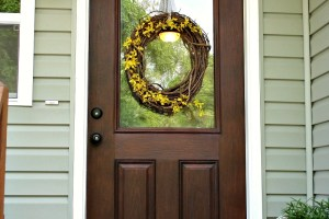 Gel Stain Fiberglass Door 1