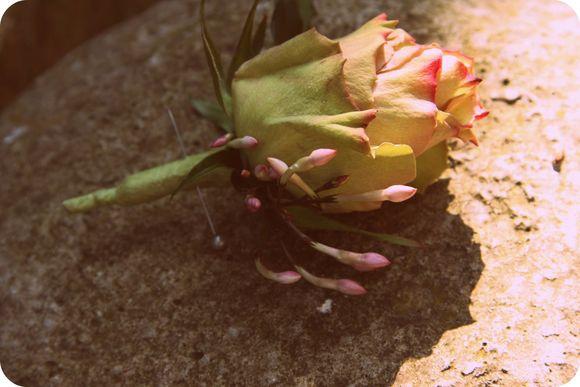 Miss Pickering ~ Modern Flowers, Vintage Passion (Weddings )