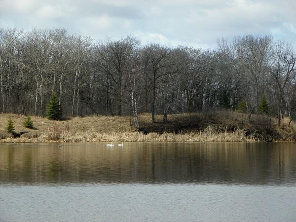 Stephenfield Provincial Park