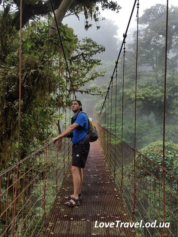 The-Monteverde-Cloud-Forest-Reserve-7-e1460573082722