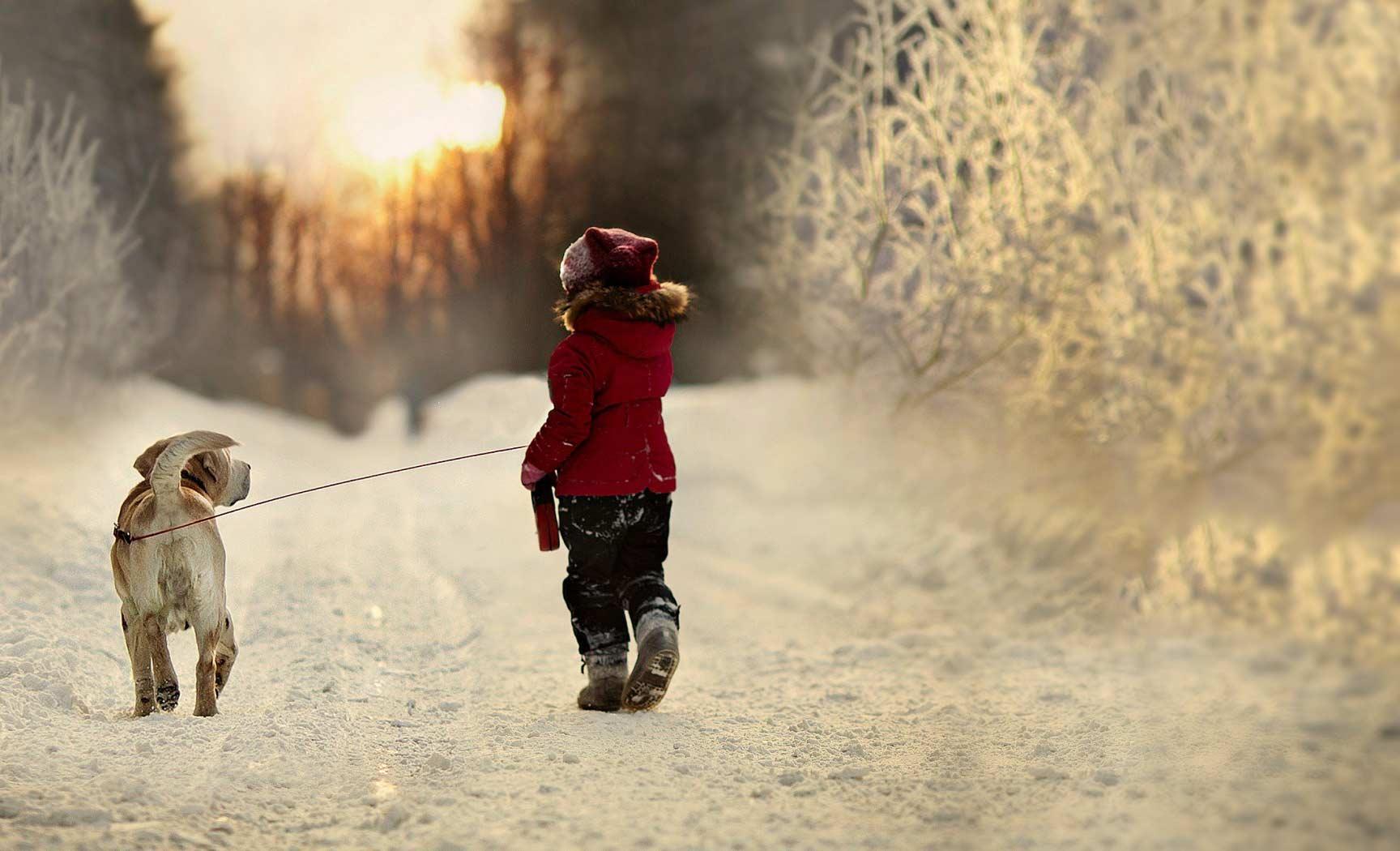 Child-walking-dog-web