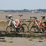 Some brave souls took their steeds down onto the mud