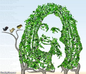 Three-Little-Birds-Bob-Marley--67637