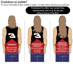 Click to See Details of Possible Mullet Enforcement