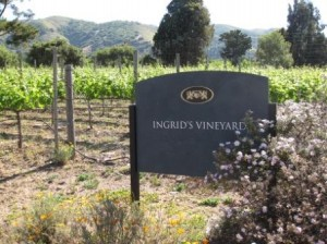 Bernardus Lodge vineyard, Carmel Valley, CA