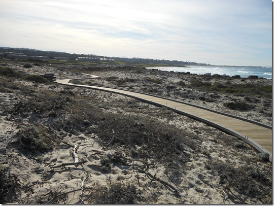 Asilomar-Spanish Bay 078
