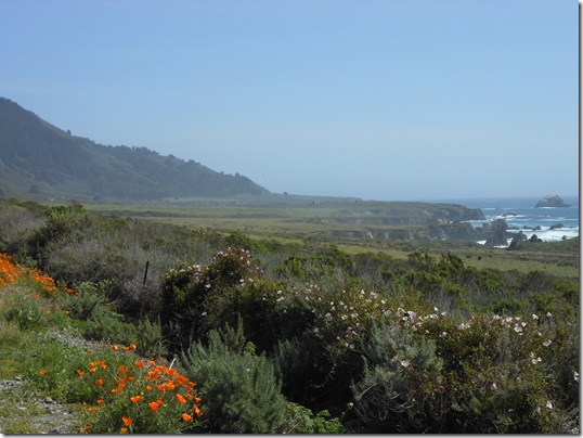 Central Coast-Big Sur 271