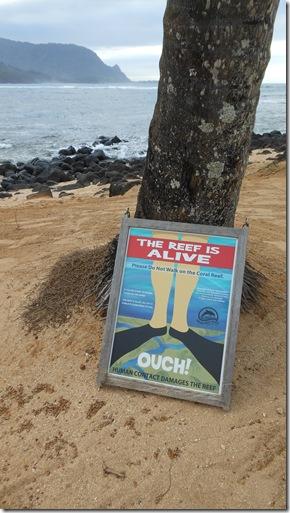 Kauai Day 3 076