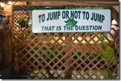 Jump or not