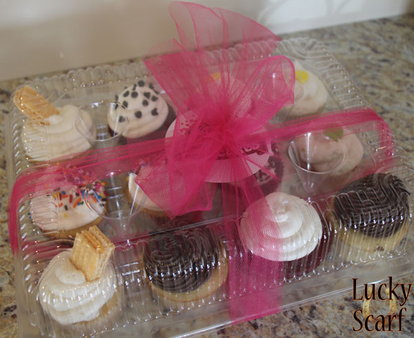 Shancakes Cupcakes Assortment