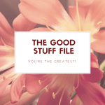 The Good Stuff File – Reminding You of Your Awesomeness