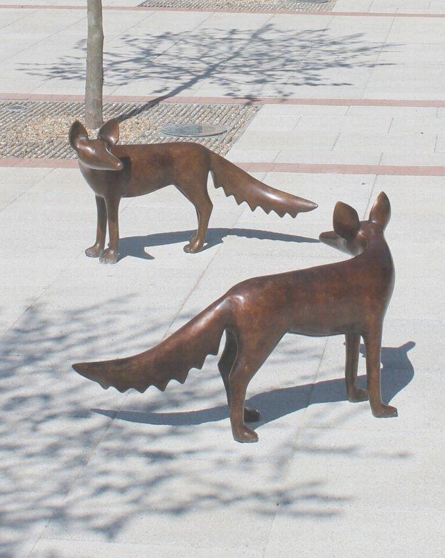 Bronze Foxes