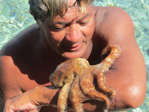 Ramon finds a baby octopus in a shallow lagoon of Bora Bora