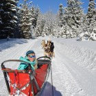 Dogsled Bend OR