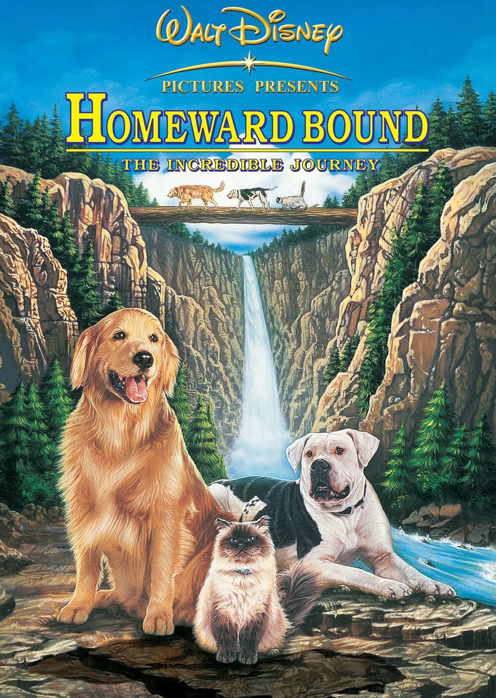 Fullsize Of Watch Homeward Bound