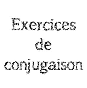 conjugaison [300x300]