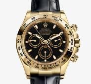 Rolex Daytona Or Jaune 6