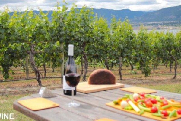bc wine reviewers program