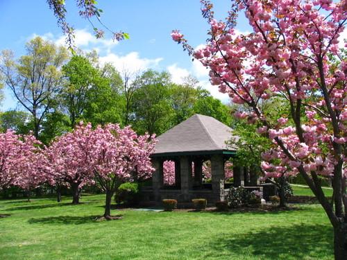 Park in Madison NJ