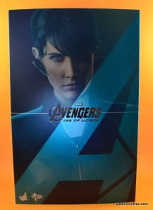 Hot Toys Maria Hill figure - front package