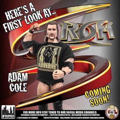 roh-series-2-adam-cole