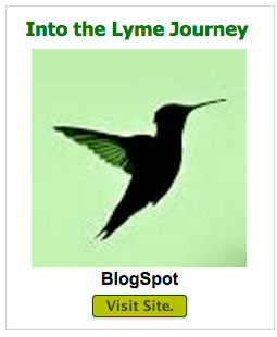 INTO-LYME-JOURNEY