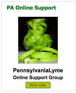 pa-online-support