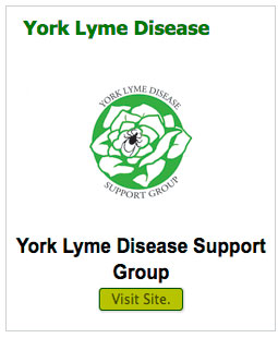 york-lyme-disease