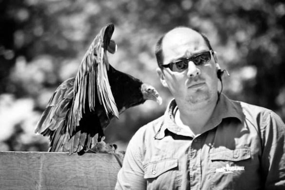260611 Parc Oiseaux 203 A la recherche de linstant décisif ...