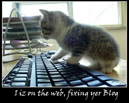 Lolcat Blog Cest la zone 51 !