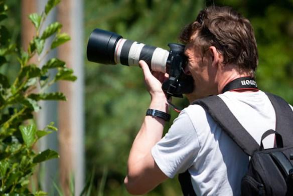 260611 Parc Oiseaux 29 2 Une journée au Parc des oiseaux av Yves Bouthérand