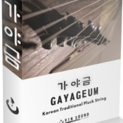 Xtant audio gayageum icon