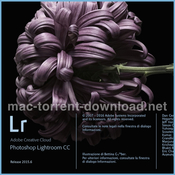Adobe lightroom 6 8 icon