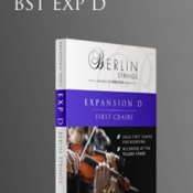 Orchestral tools berlin strings exp d first chairs icon