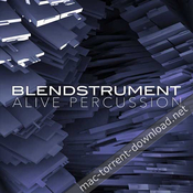 8dio blendstrument alive percussion kontakt icon