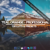 Teal and orange professional all in one 130 luts and presets icon