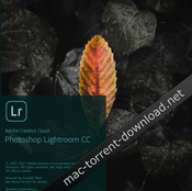 Adobe photoshop lightroom cc 1 0 icon