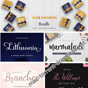 Designbundles 7 fonts and 18 vectors bundle icon
