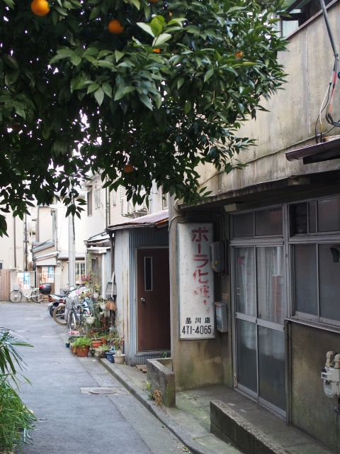s P2230229 品川宿,高層ビル群のこぼれ陽が当たる路地裏 / alleys in Shinagawa,used to be the last post‐town on the road from Kyoto to Edo.