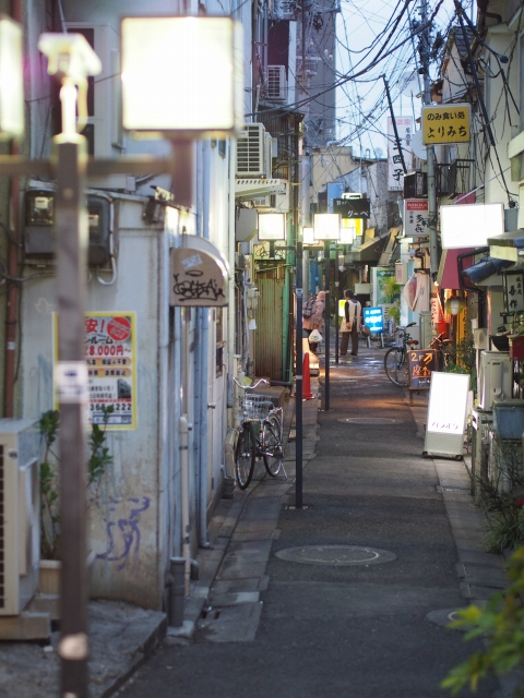 P31300191 大森駅至近のディープゾーン,地獄谷と居酒屋横丁ビル / Pub alley nearby Omori Station,commonly called the Hell Valley
