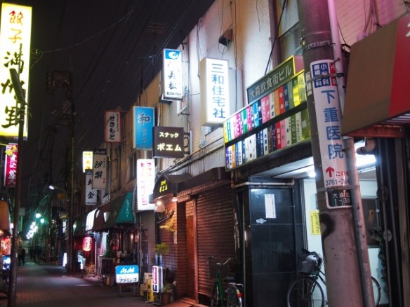P3130060 大森駅至近のディープゾーン,地獄谷と居酒屋横丁ビル / Pub alley nearby Omori Station,commonly called the Hell Valley