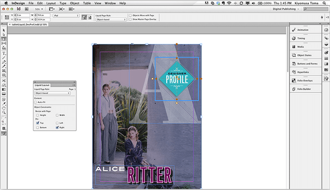publisher for mac - indesign