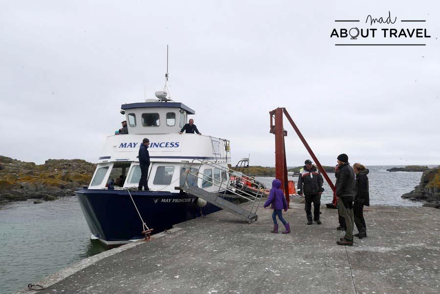 Barco de Anstruther Pleasure trips en la Isla de May en Escocia