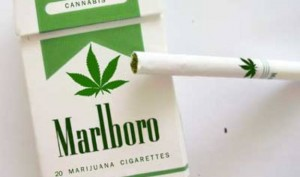 marijuana-cigarettes-300x177
