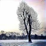 4 foto bewerkt met prisma (8)
