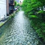 京の小川。