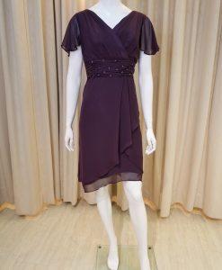 紫色,雪紡紗,荷葉袖,V領,A-line,小禮服