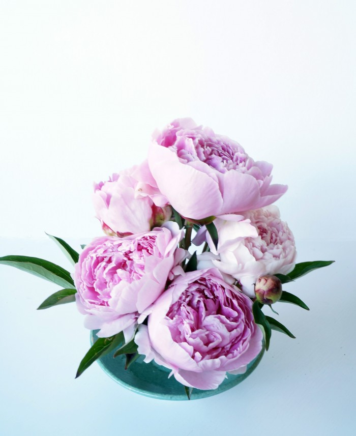 Peonies anchored with flower frog