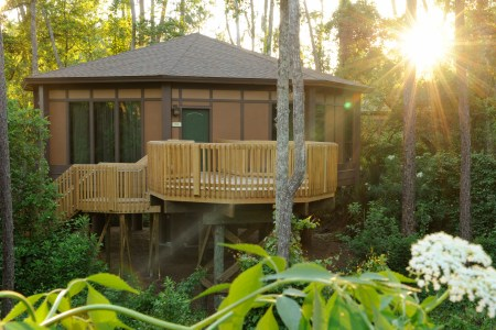 treehouse villas kent phillips